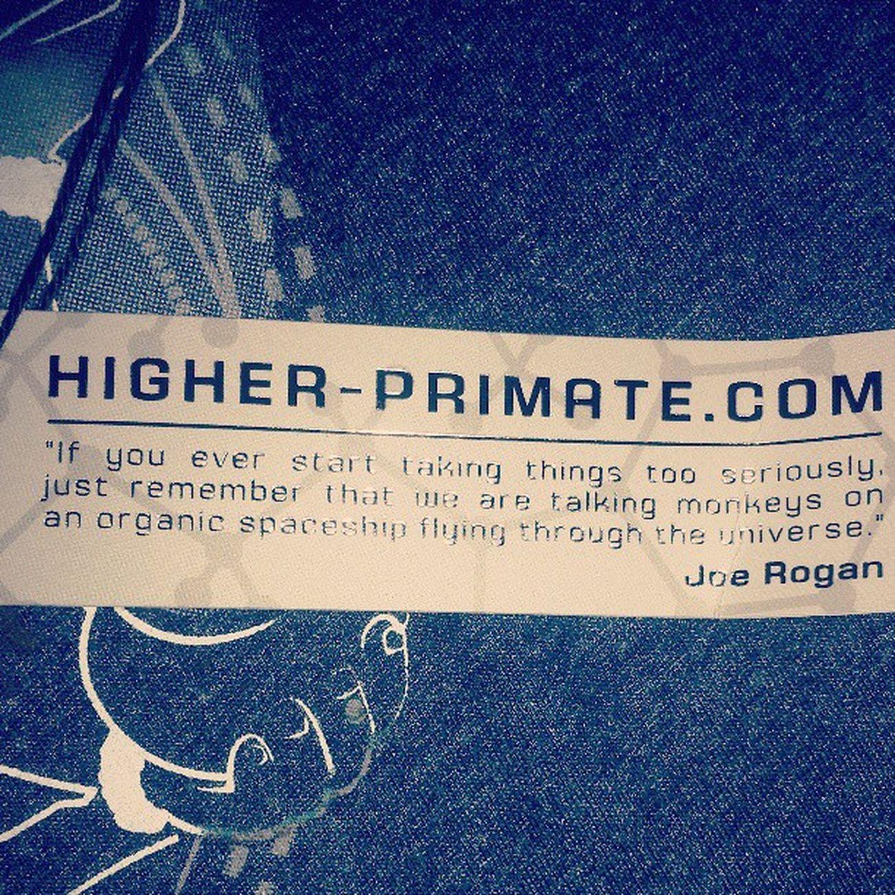 Higherprimate Joerogan @joerogan Chill Relax universe