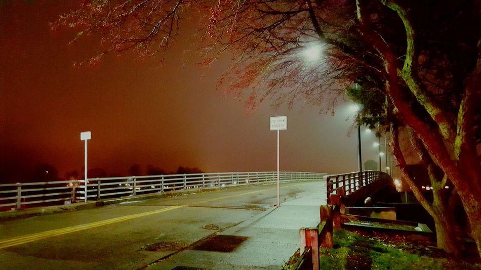 Do Not Enter Rainy Night Bridge To Nowhere No Pedestrians Night Photography Street Light Street Photography Lonely Place  Elmira Ny Urban Exploration Illuminated Adapted To The City Long Goodbye