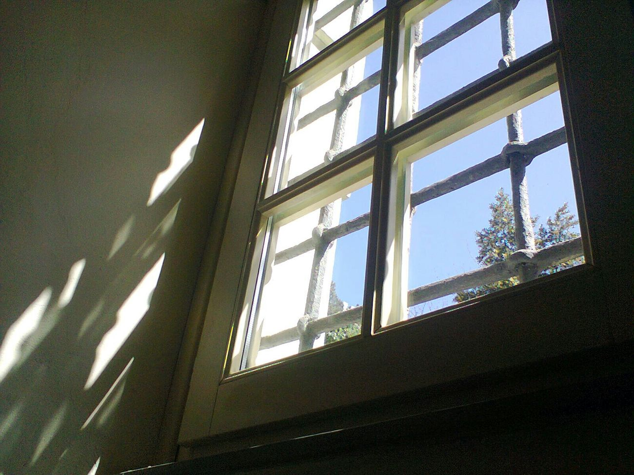 Il sole oltre le sbarre... Library Biblioteca University Università  Sole Sun Ombre Shadows Nofilter Phone Photography 📚☀😢😪