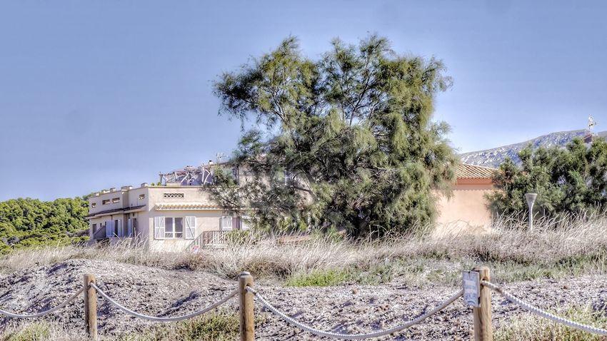a finca right on the beach Spanish Architecture Enjoying The View Son Serra De Marina Mallorca (Spain) EyeEm Best Shots EyeEm Best Edits Sunny Day Tree Sand Dune Hillside View Finca