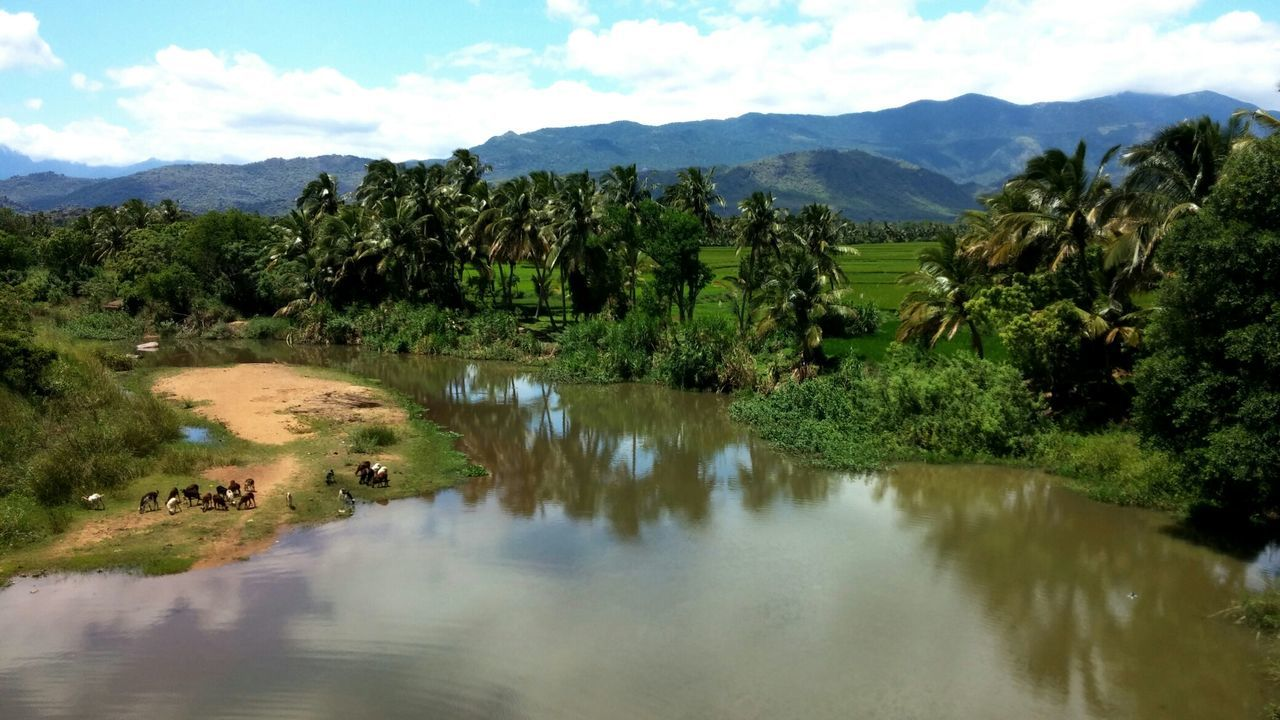Beautiful Ambasamudram, Tamil Nadu Tirunelveli Ambasamudram Farmland Water Reflection EyeEm Nature Lover