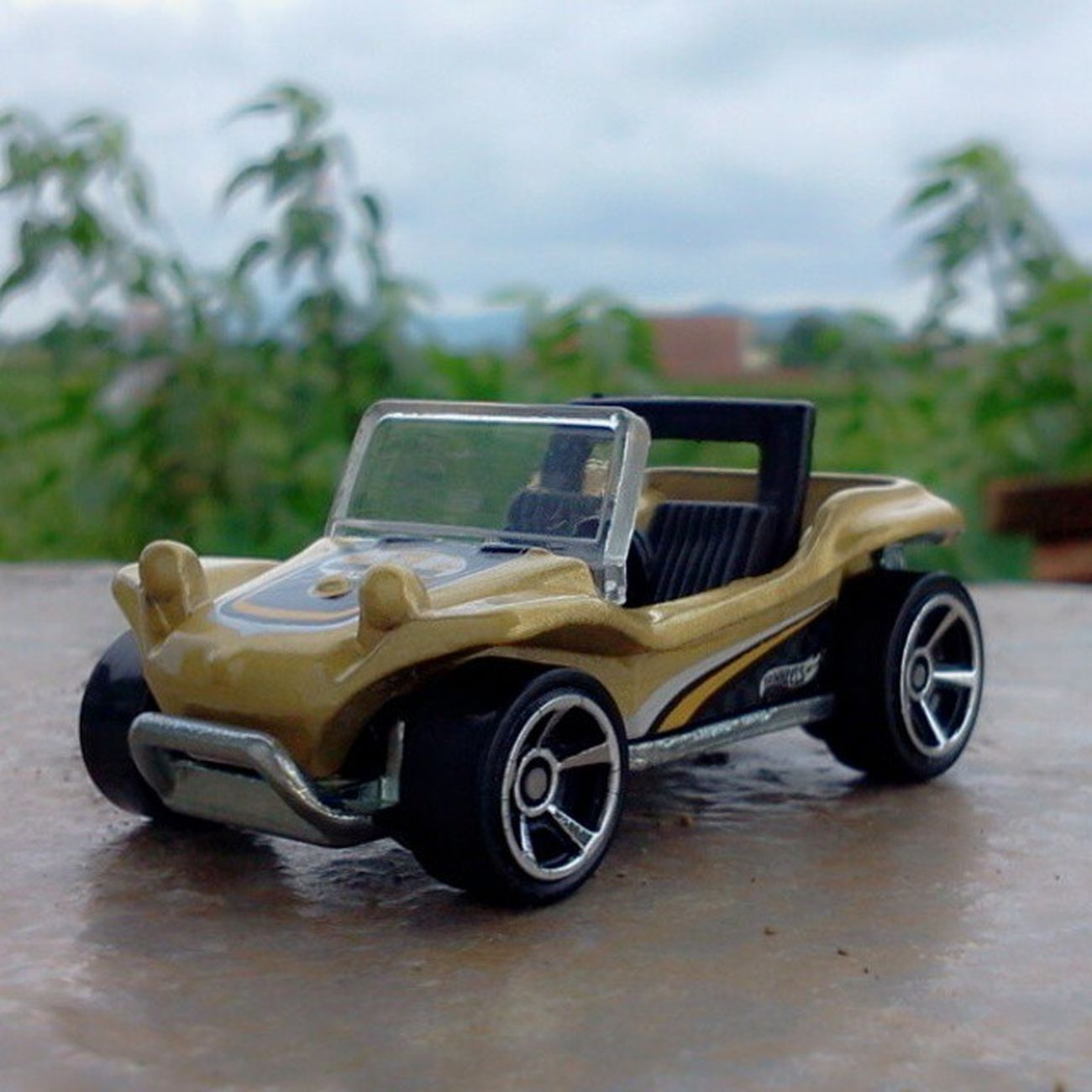 Meyers manx Nature Explore HW Hwloose Hwc HotWheels Hotweelscollection Hotwheelscollections Hotwheelsindonesian Hotwheelscollector Hotwheelsaddict Hotwheelsaddicted Diecast Diecast_addict Diecast_indonesia DiecastIndonesia Scale164 Instalike Instacollection Instacollectin Instacar Instatoys Store ToyCar Follow followme