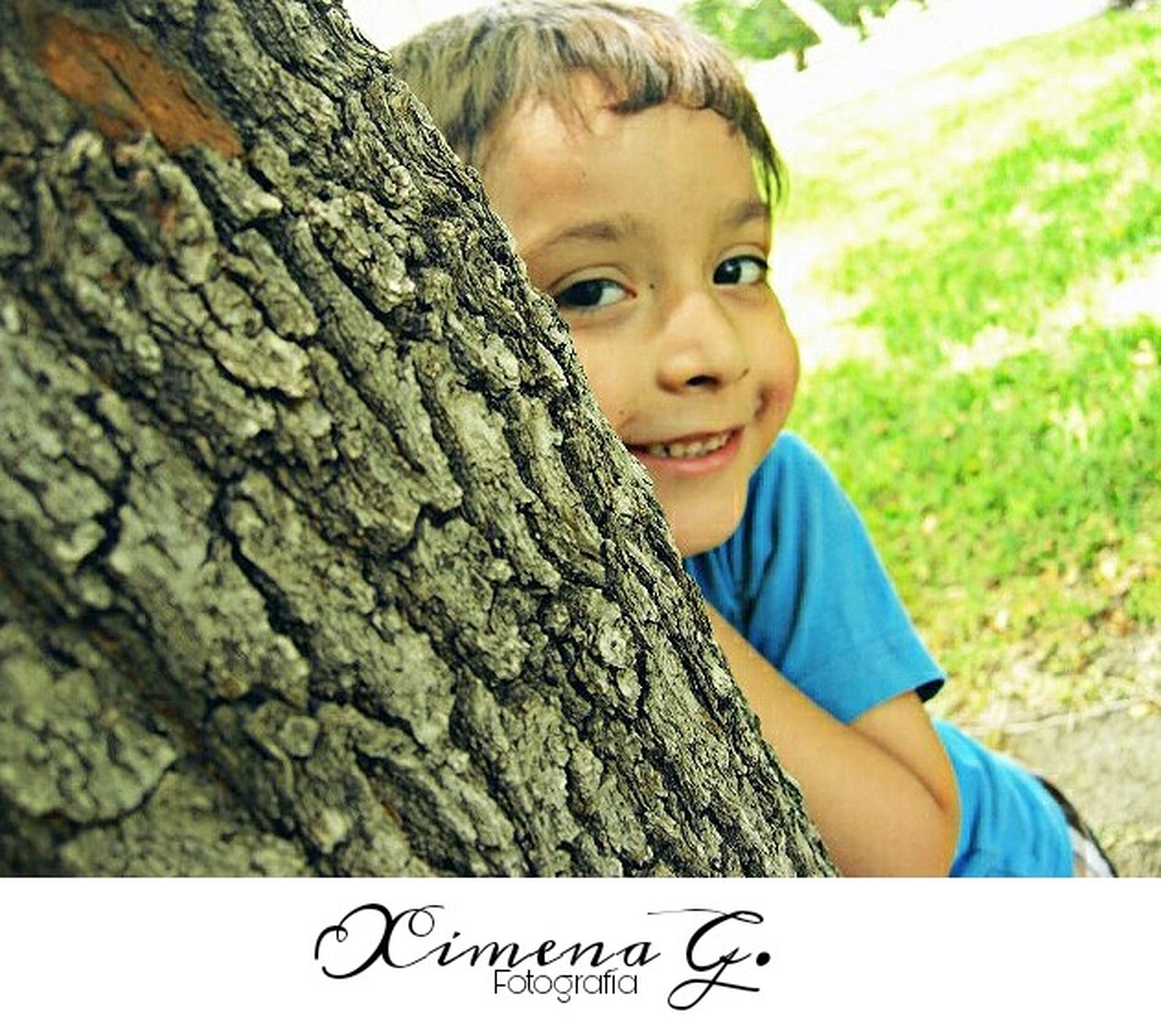 tree trunk, tree, childhood, boys, casual clothing, one person, day, outdoors, holding, real people, smiling, happiness, portrait, one boy only, nature, people
