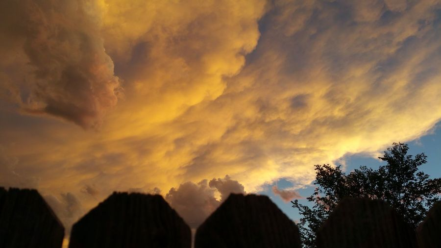 Awesome_view Awesome Weather Orange Clouds Storm Clouds Fence With A View Behind Trees And Sky Cool Picture No People