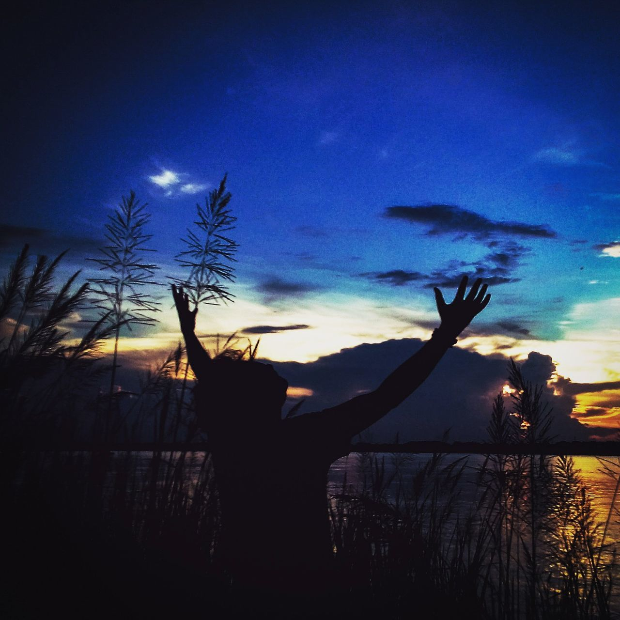 silhouette, sky, sunset, nature, tree, outdoors, beauty in nature, scenics, real people, night, one person, people