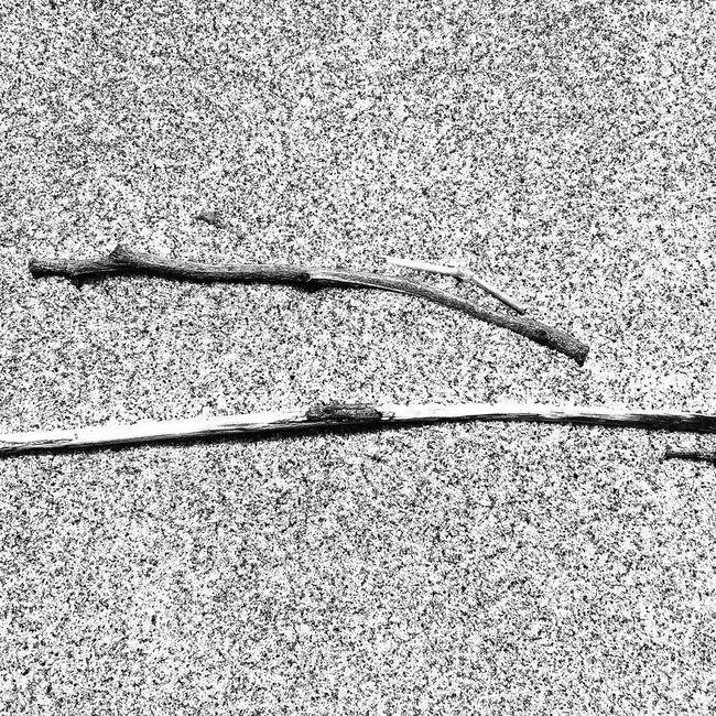 Nature_collection EyeEm Porto Mobile Photography Youmobile Blackandwhite NEM Submissions Mobitog AMPt_community WeAreJuxt.com Mob Fiction EyeEm Best Shots EyeEm Gallery Black & White Blackandwhite Photography Mobiography NEM Silence Black And White