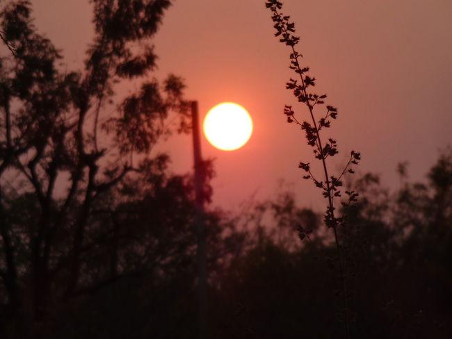 Beautiful sunset Taking Photos First Eyeem Photo