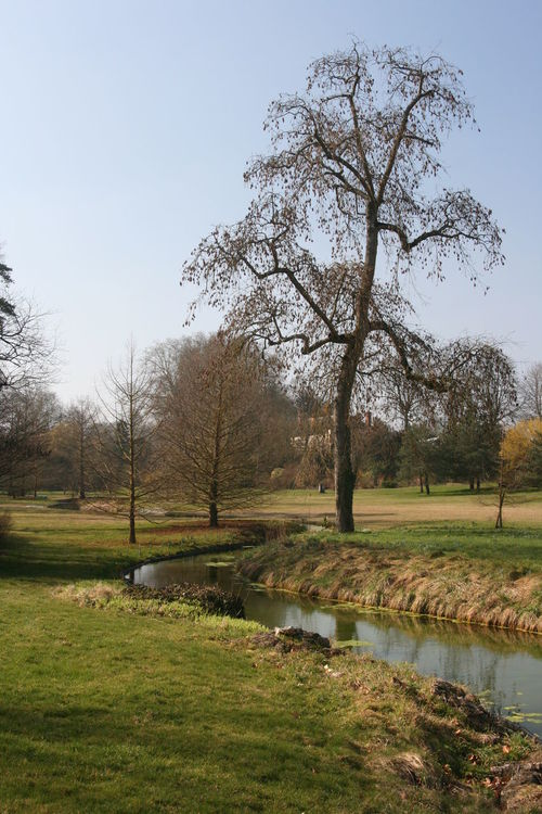 Agriculture Bare Tree Beauty In Nature Day Field Fontainebleau Fontainebleau Garden Grass Growth Landscape Nature No People Outdoors Sky Tranquility Tree Water