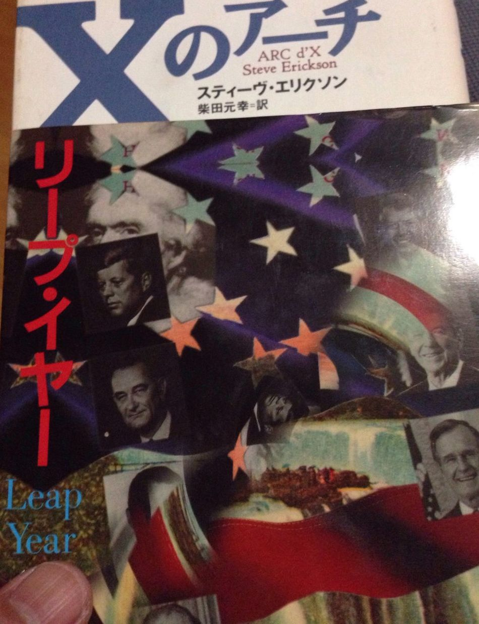 Book Steve Erickson Leap Year Trump