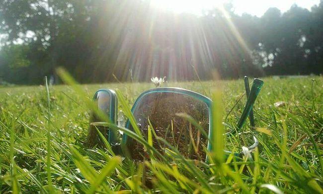Angelrays Sunhine Sunglasses Grass Delftse Hout Delft NL Holland Thenetherlands Dutchie Samsung Galaxy S5 Ladyphotographerofthemonth Osiris Brand