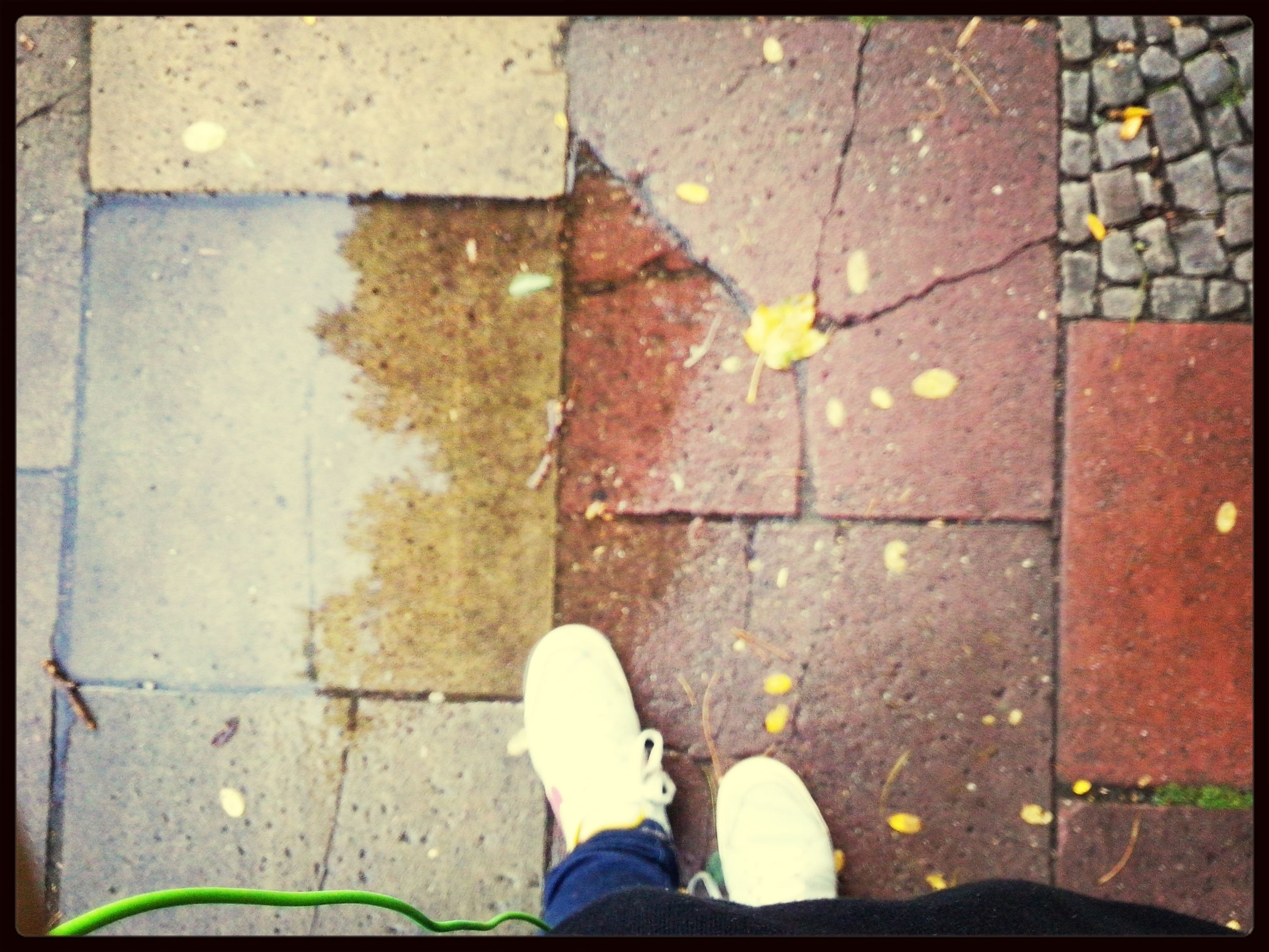 low section, person, shoe, standing, personal perspective, high angle view, street, lifestyles, footwear, human foot, unrecognizable person, men, leisure activity, leaf, sidewalk, directly above, transfer print