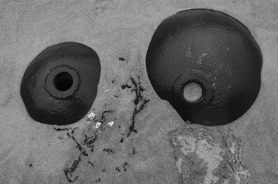 Beach Life Buried Buried In Sand Circles Circles In Circles Eyes Hidden Little Flowers Lofoten Metal Metallic Norway Round Blackandwhite Photography Black And White Photography