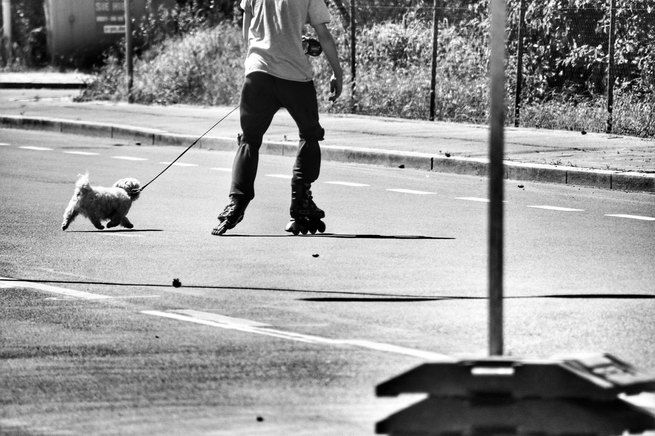 the flying dog😂Dog Inline Skating Sport Leisure Activity One Animal Pets Lifestyles People Only Men Streetphotography Black And White Day Outdoors The Street Photographer - 2017 EyeEm Awards