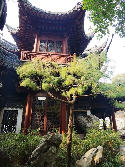 Yu Yuan Garden Architecture Built Structure Tree Day No People Building Exterior Outdoors