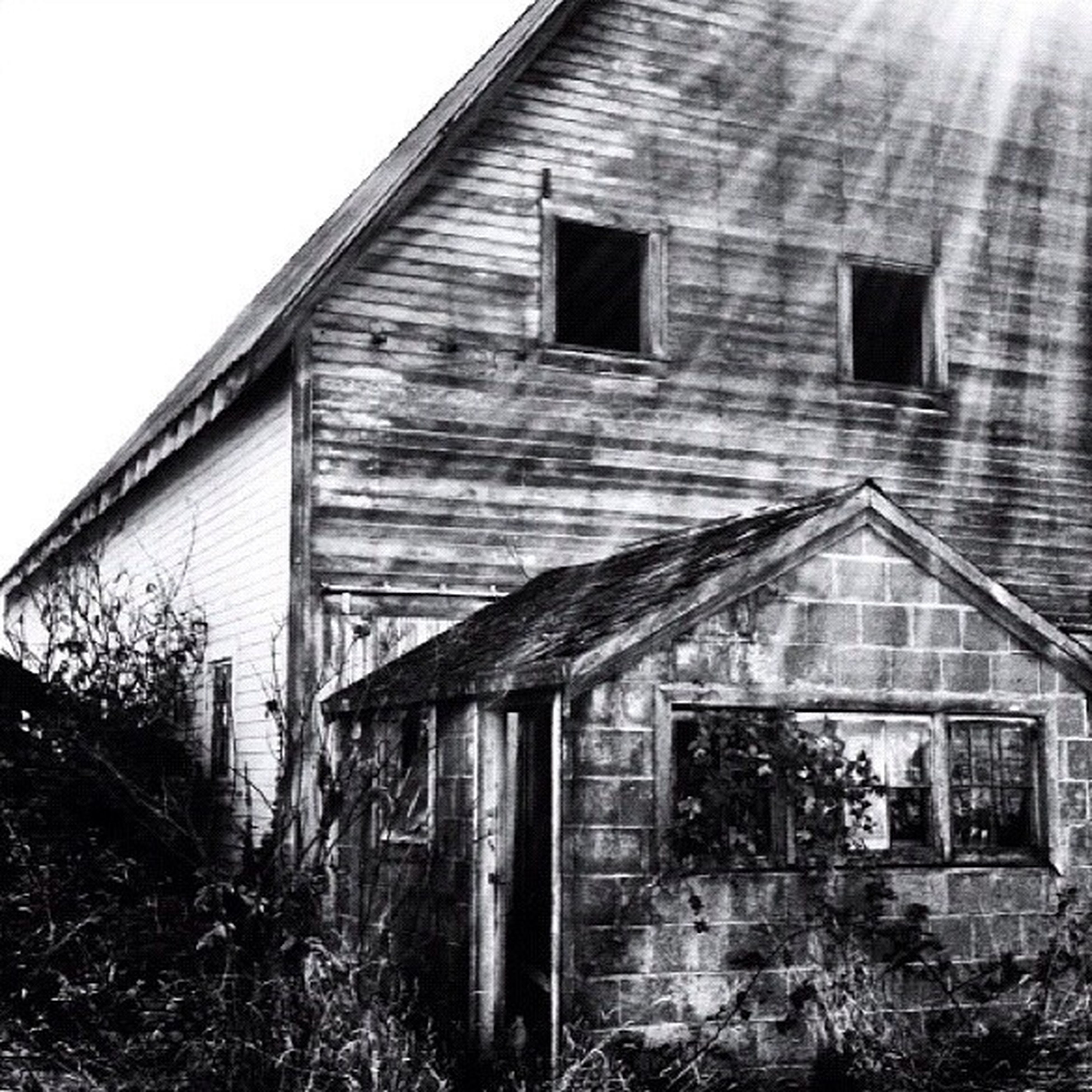 architecture, built structure, building exterior, window, house, abandoned, residential structure, low angle view, residential building, building, old, day, outdoors, damaged, no people, clear sky, weathered, obsolete, reflection, sky