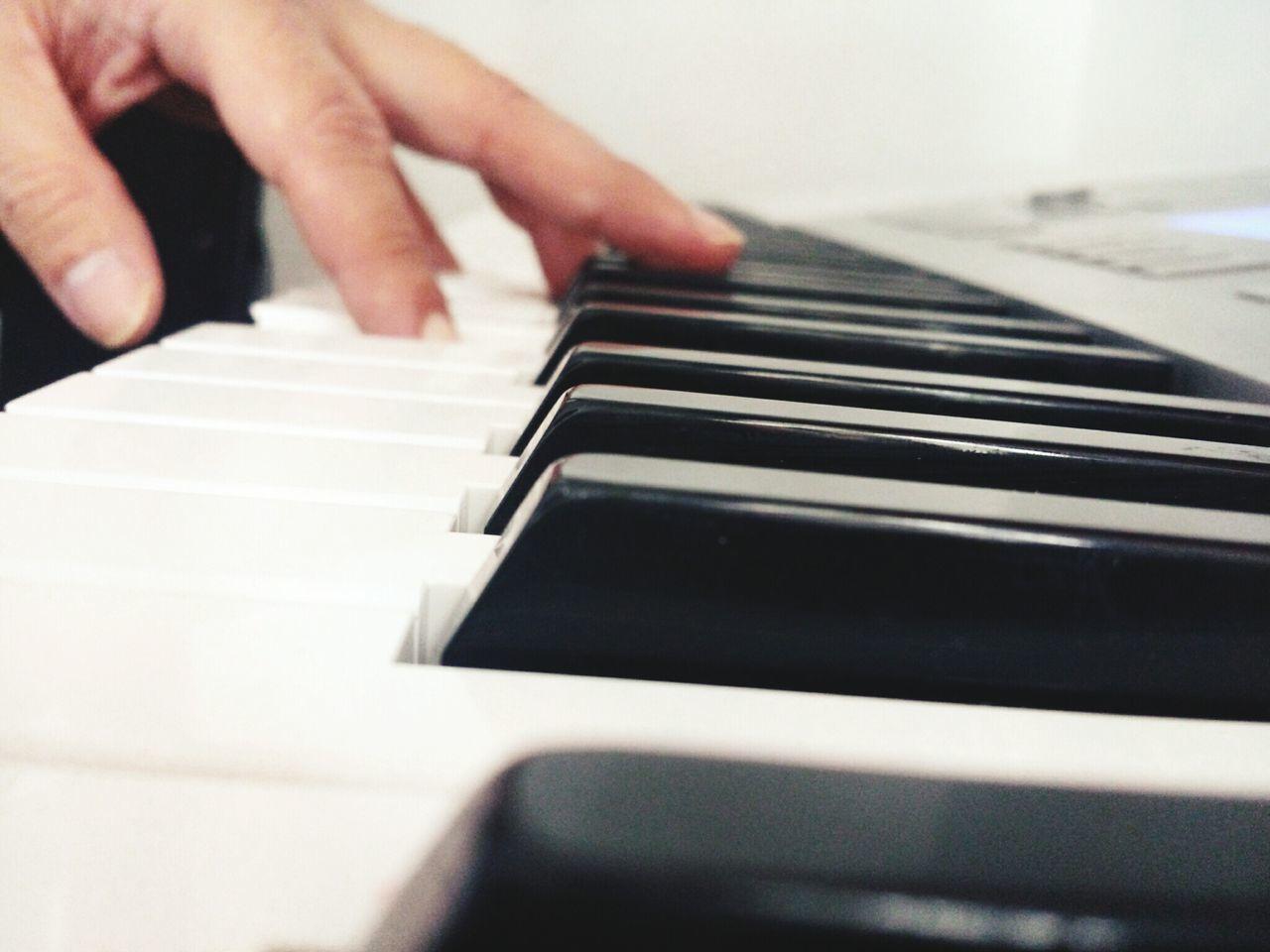 Playing Piano Piano Keys Pianist Pianokeys Pianoporn Piano Lover Playing The Piano Piano Man Piano Keyboard  The Amazing Human Body
