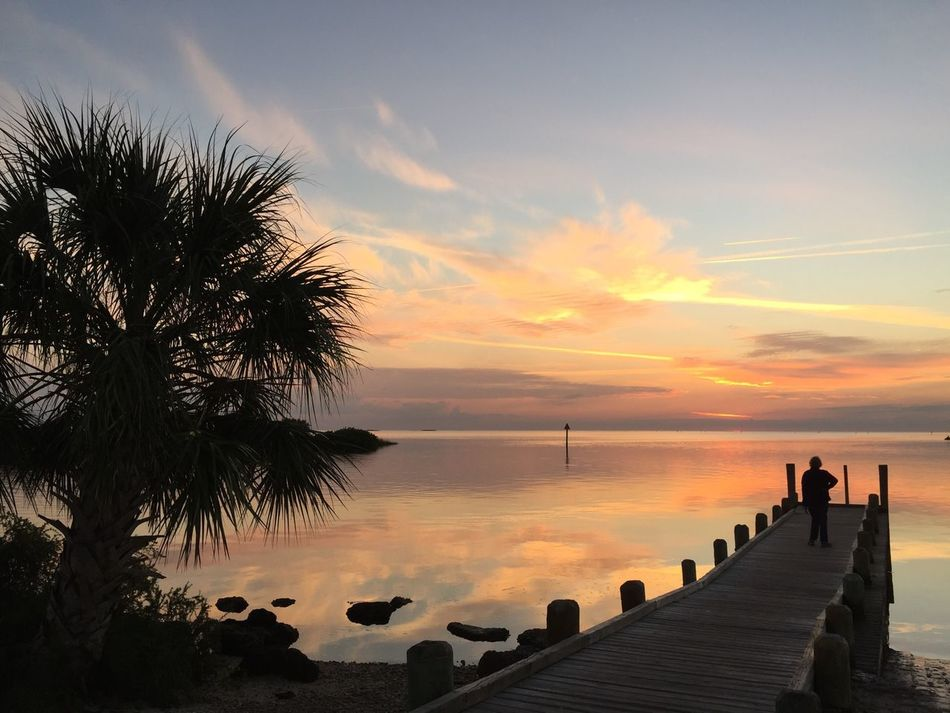 Sunset Water Water Reflections Sea Beauty In Nature Horizon Over Water Sky Silhouette Tranquil Scene Tranquility Nature Scenics Real People Palm Tree Cloud - Sky People Day Outdoors Landscape Florida United States No Filter No Edit EyeEm Best Shots