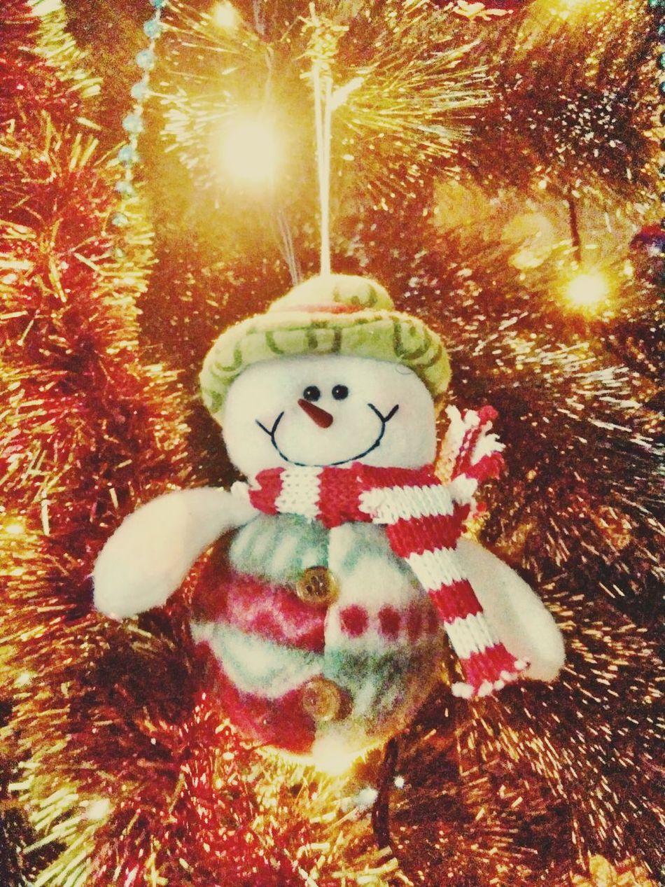 Jolly Christmas Around The World Season  Beautiful Day Hello World Christmas Tree Christmas Decorations Christmas Is Coming Merry Christmas ♡ Snowman Human Representation Indoors  Lights Holiday