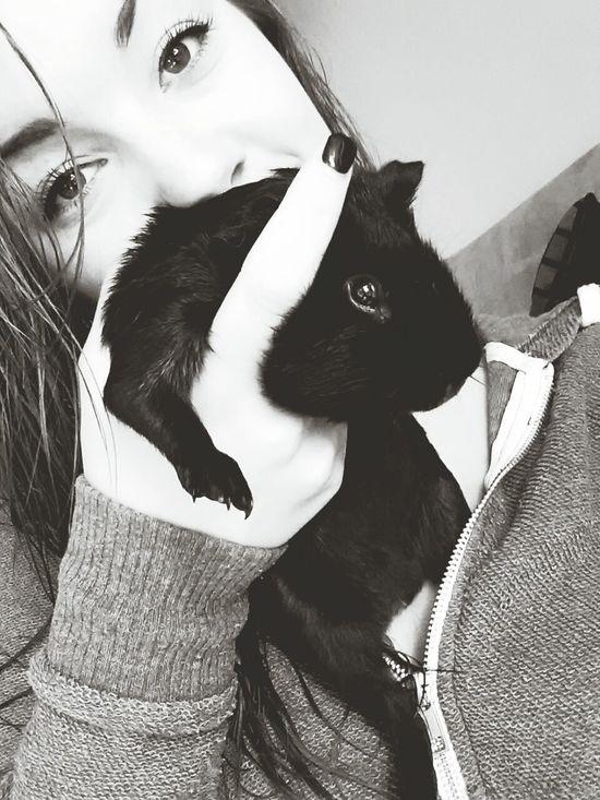 My baby??? Guineapigstagram Guineapig Cute♡ Blackandwhite