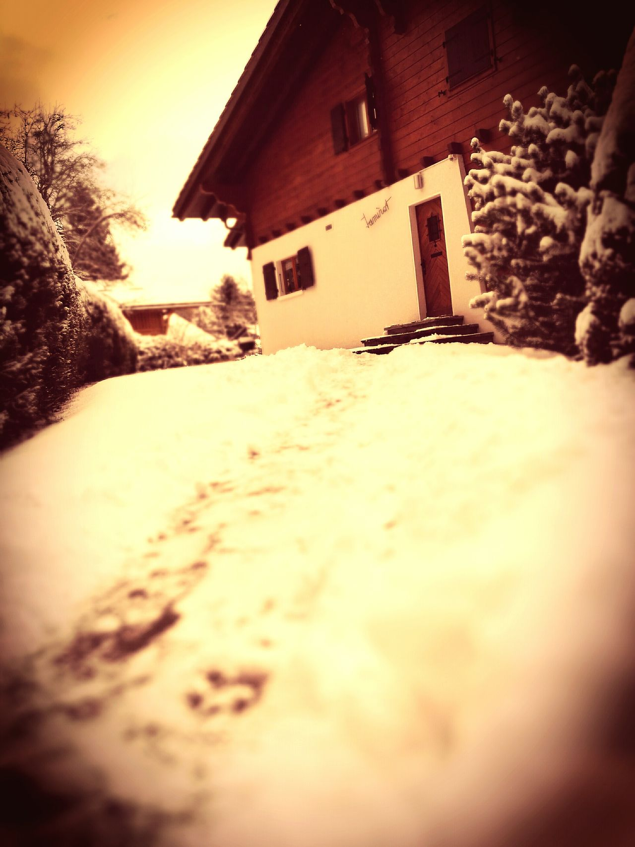 Traveling Home For The Holidays Swiss Alps Home Swissmade Tranquility Swiss Mountains Swissbeauty No People House Entrance Snow Outdoorshot Houses And Mountains Chalet Snow ❄ Trail Traveling Home For The Holidays