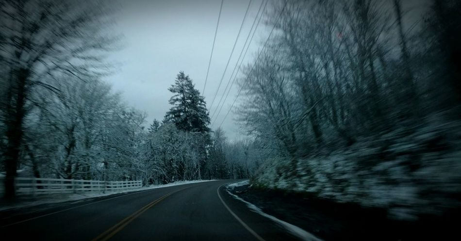 Tree Road Transportation The Way Forward No People Nature Sky Outdoors Day Snow Snowing Winter Driving