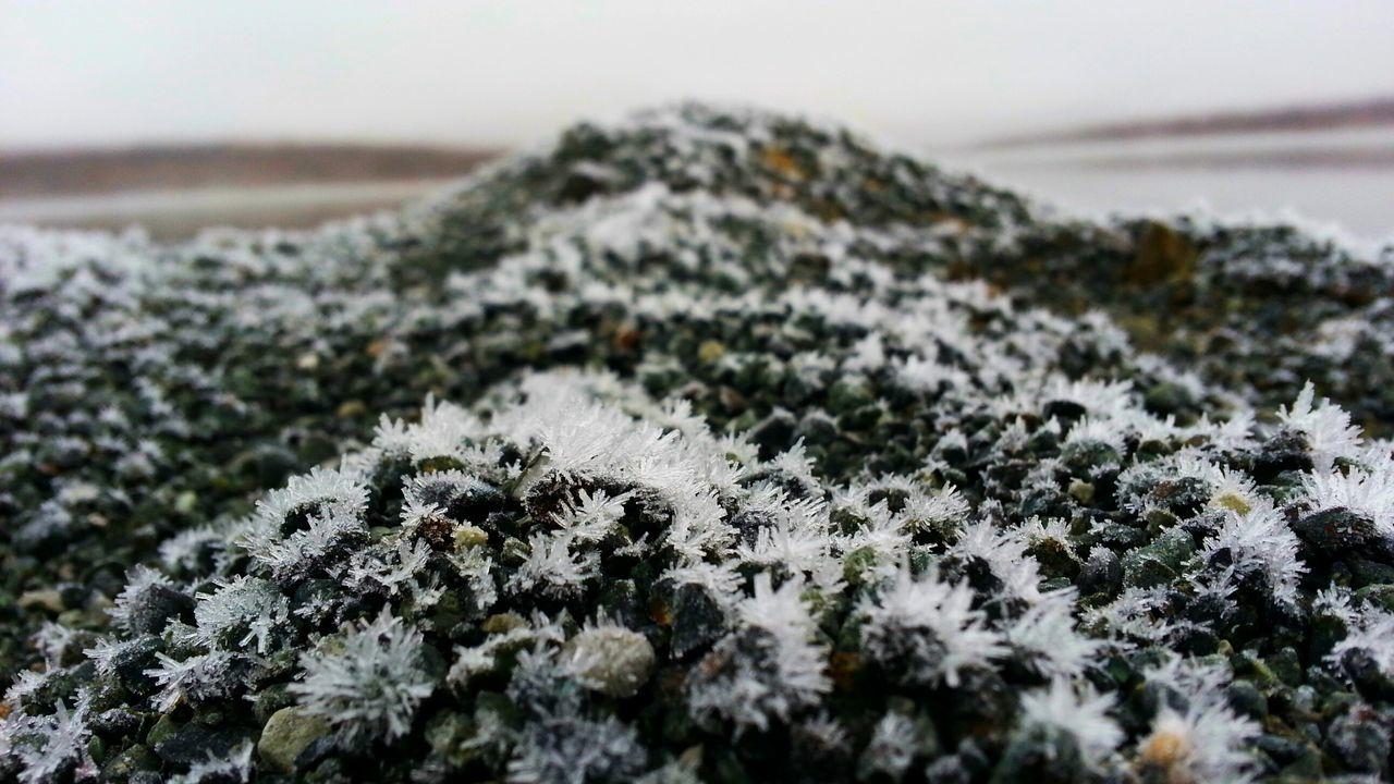 иней инейнапеске Beauty In Nature Aykhal Winter