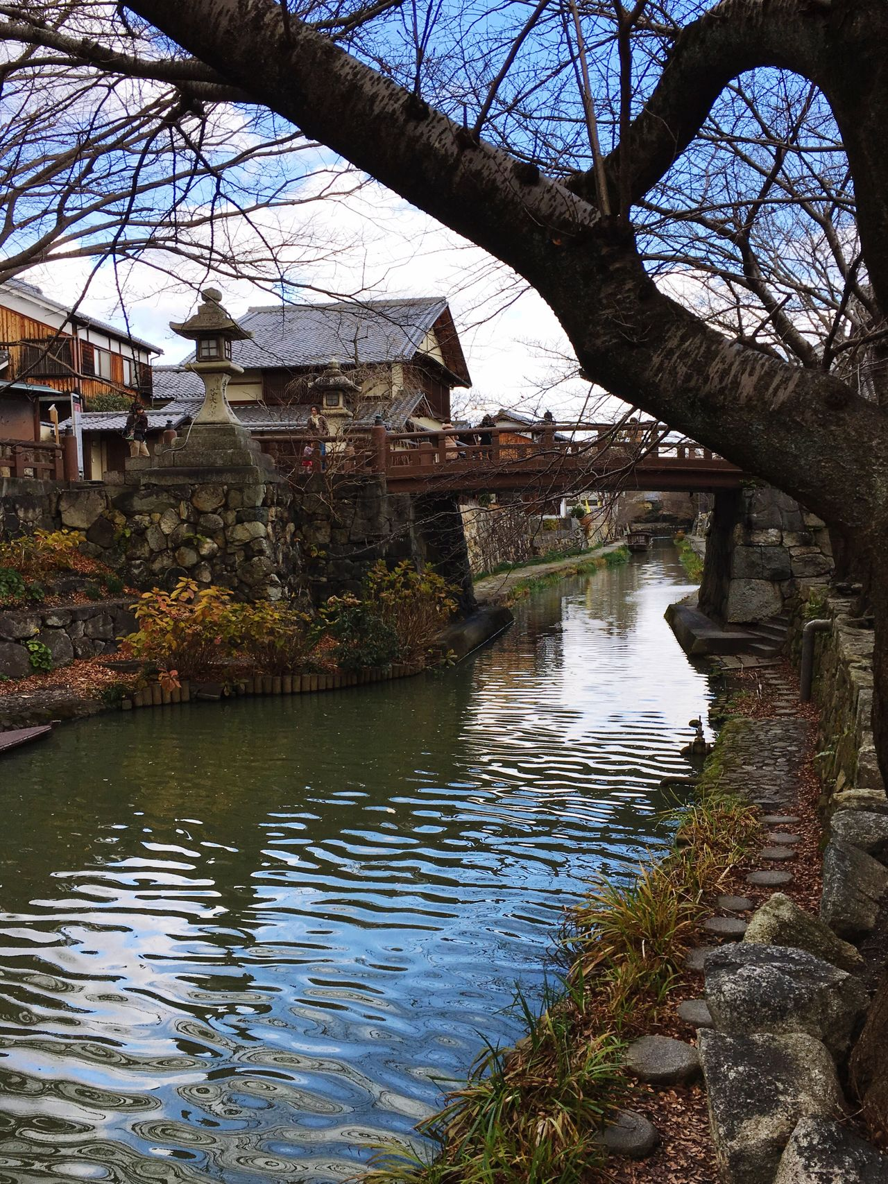 Travel Destinations Travel Photography Traveling Iphone6s IPhoneography Japan Ōmihachiman Canal Waterfront Old Houses Wooden House Bridge Tranquility Tranquil Scene 近江八幡