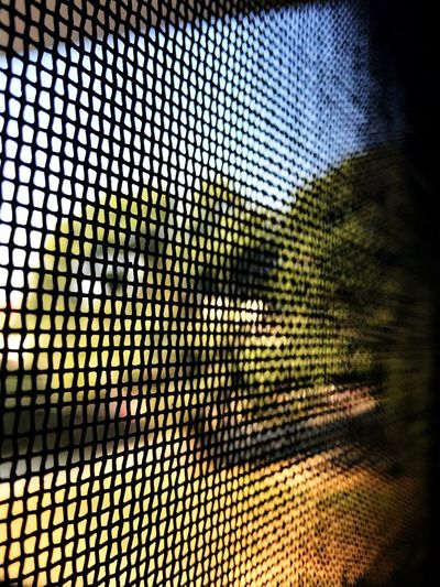 Blocked View Landscape_Collection EyeEm Nature Lover EyeEm Best Shots Tree Day Metal Grate Backgrounds No People Full Frame Pattern Window Close-up Indoors  Beauty In Nature Blue Sky Trees And Grass EyeEm Ready