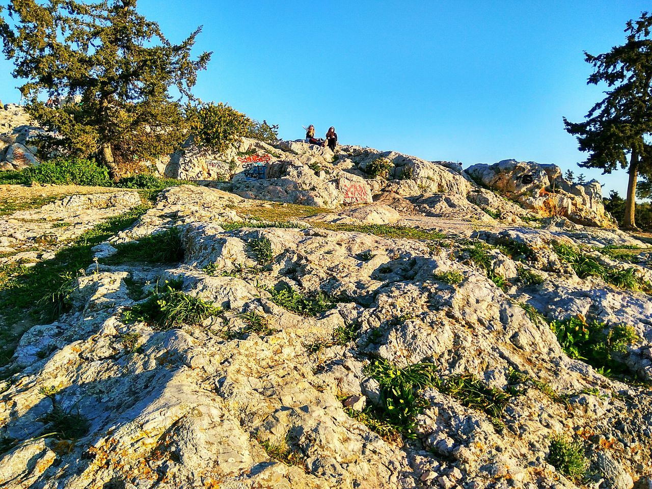 Growth Nature Sunlight Tree Outdoors Day Beauty In Nature Sky EyeEm Nature Lover Acropolis Athens Greece Horizon People Of EyeEm Clear Sky Rocks Leisure Activity Enjoying The Sun Enjoying Nature Enjoying The View Hills Low Angle View