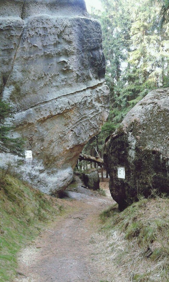 Böhmisches Tor (Ceska brána) Rocks Nature Forrest Naturpark Zittauer Gebirge