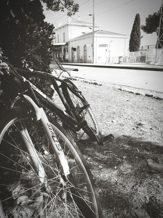 Afternoon of early september... Mode Of Transport Day First Eyeem Photo