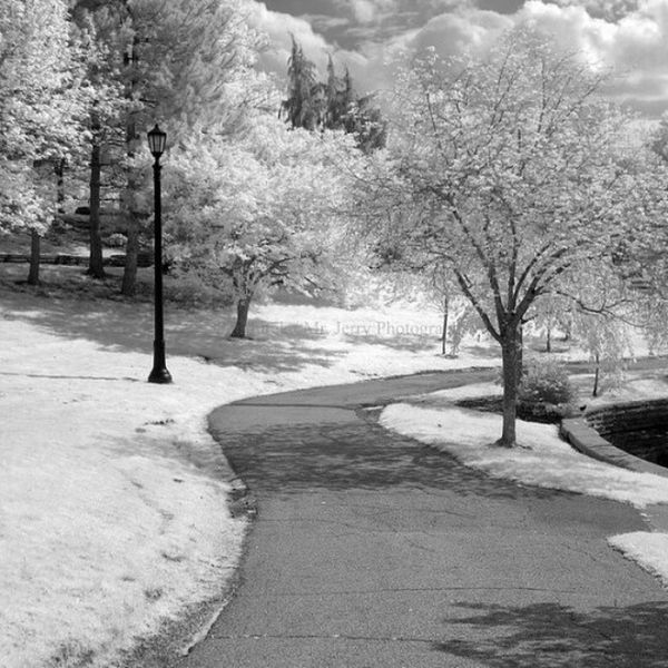 IMG_2409 by polishamericanphotographer on Flickr. Just follow this link to see and comment on this photo: https://flic.kr/p/sbqkNA Cleaveland CLE  Cleveland ClevelandOhio1796 Ohio UniversityCircle WadeLagoon CuyahogaCounty EastSide Water Beautifulohio Blackandwhite Blacknwhite Infrared CanonG11 InfraredCanonG11 Canon TeamCanon Digitalcamera Digitalphotography Digitalphoto PointNShot PointandShot Powershot ThisisCLE