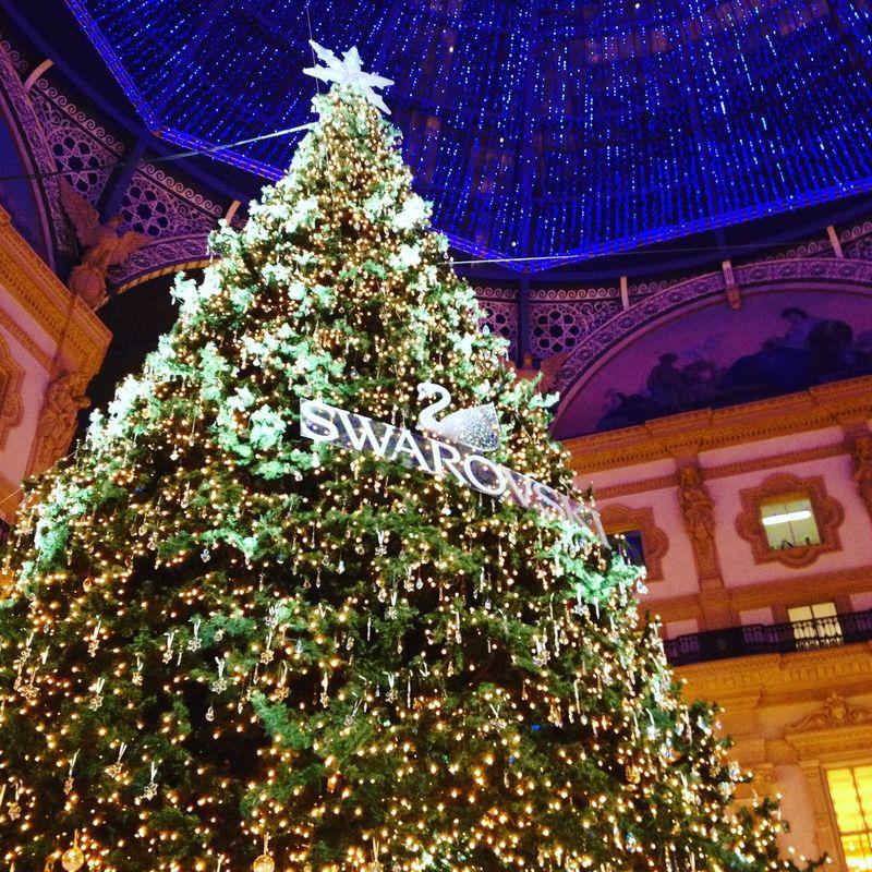Photographic Memory рождество новыйгод Елка2015 Christmas Tree Christmas Lights NewYear Christmastime Christmas Decorations Milano Italy милан Италия италияудивляет