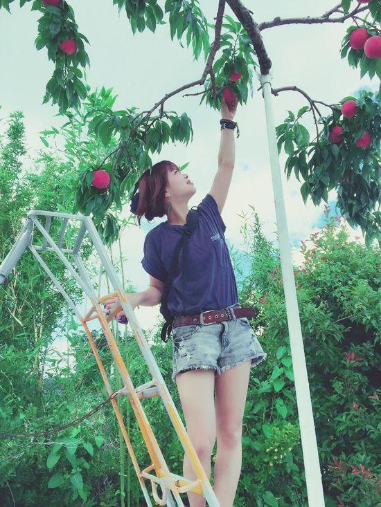 Peach 桃狩り Happy 夏 Summer Japan Fruit Wow!! Woman Girl