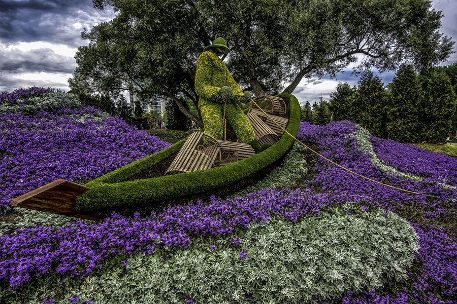 Canada150 Gatineau Lobsterman Maritimer Ontario Ottawa Quebec Beauty In Nature Canada Cloud - Sky Flowers Growth Mosiac Outdoors Plant Purple Statue