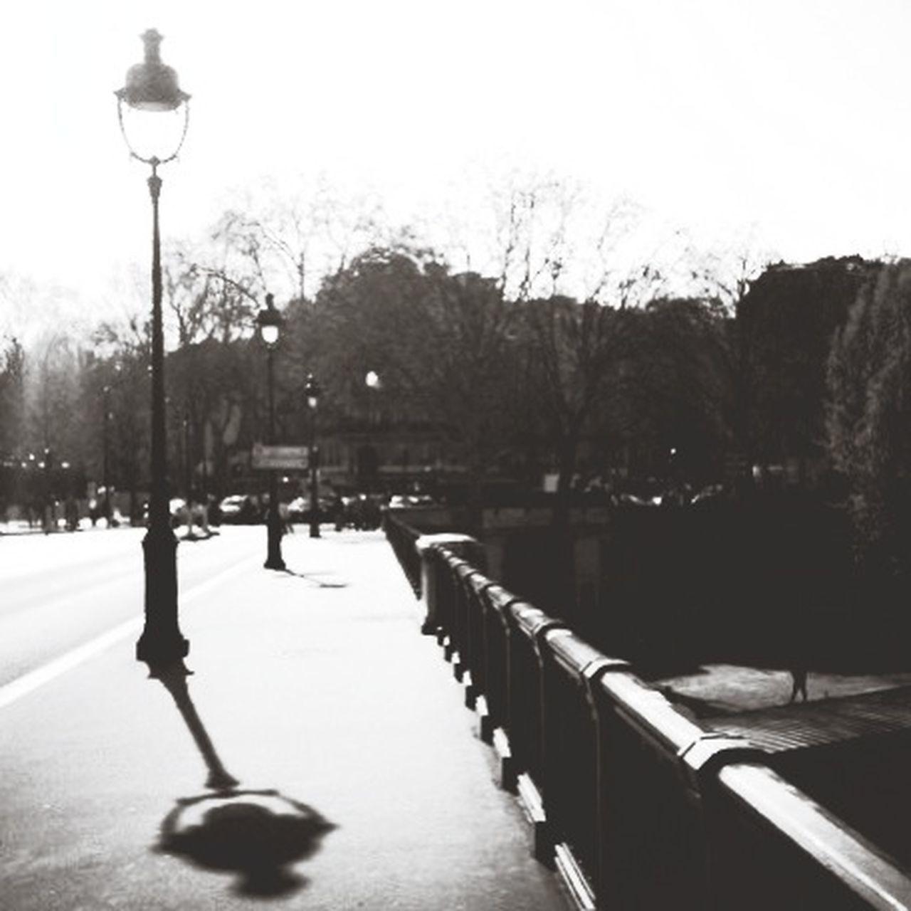 Walking in Paris Paris B&W