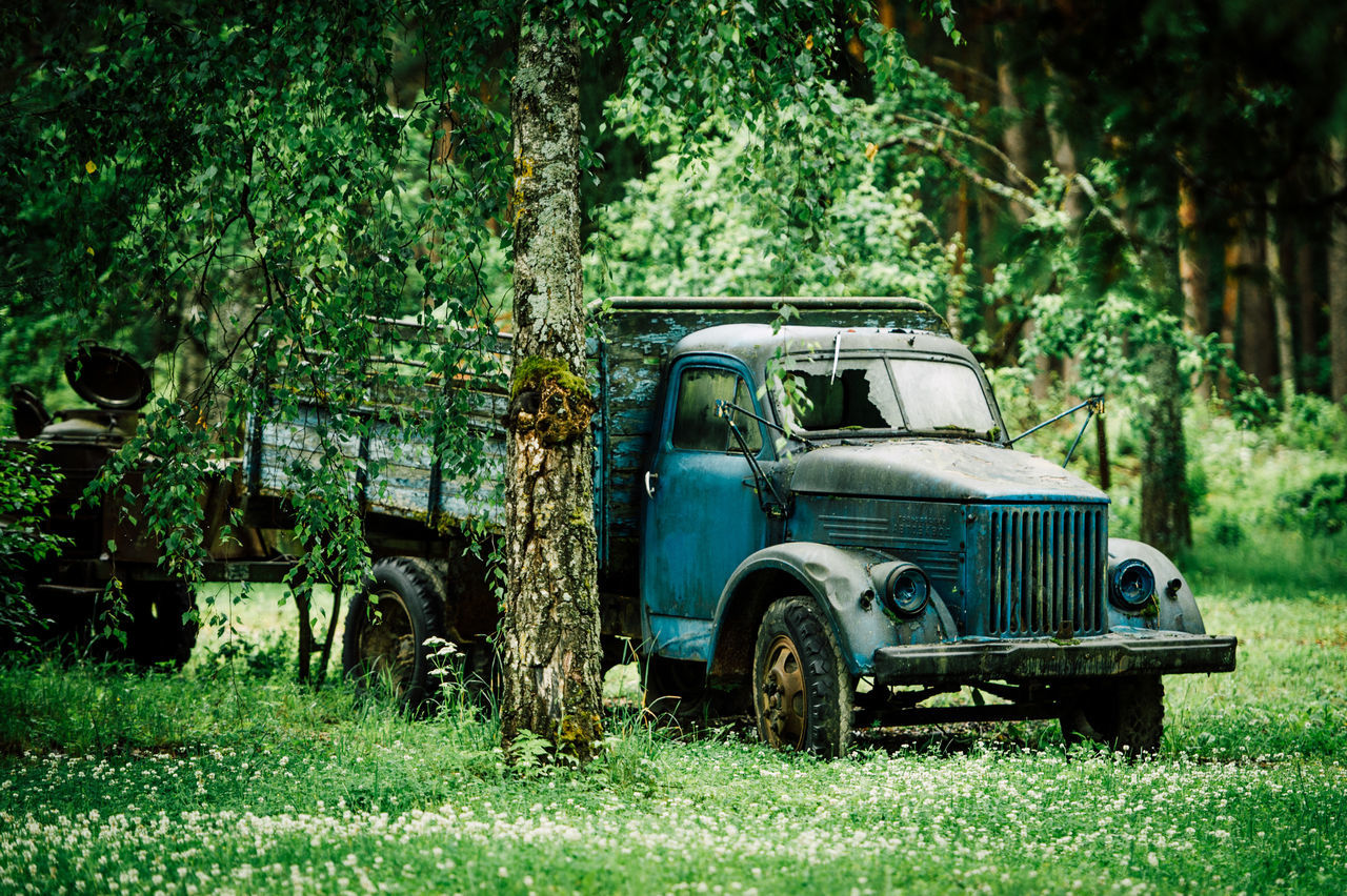 Abandoned Bad Condition Car Damaged Day Field Grass Green Color Land Vehicle Mode Of Transport Nature No People Obsolete Outdoors Plant Rusty Transportation Tree