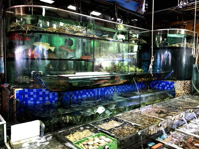 Seafood restaurant. Select which you like and get it prepared. Walking Around Taking Photos Enjoying Life