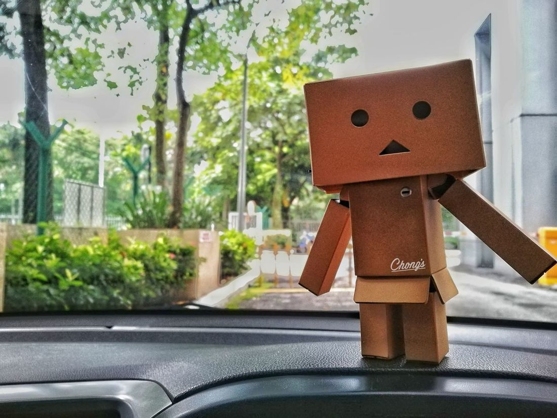Car Brown No People Childhood Anthropomorphic Face Tree Close-up Day Teddy Bear Sun Huawei P9 Plus Huawei P9 Leica Huawei P9. Technology Focus On Foreground Enjoyment Outdoors