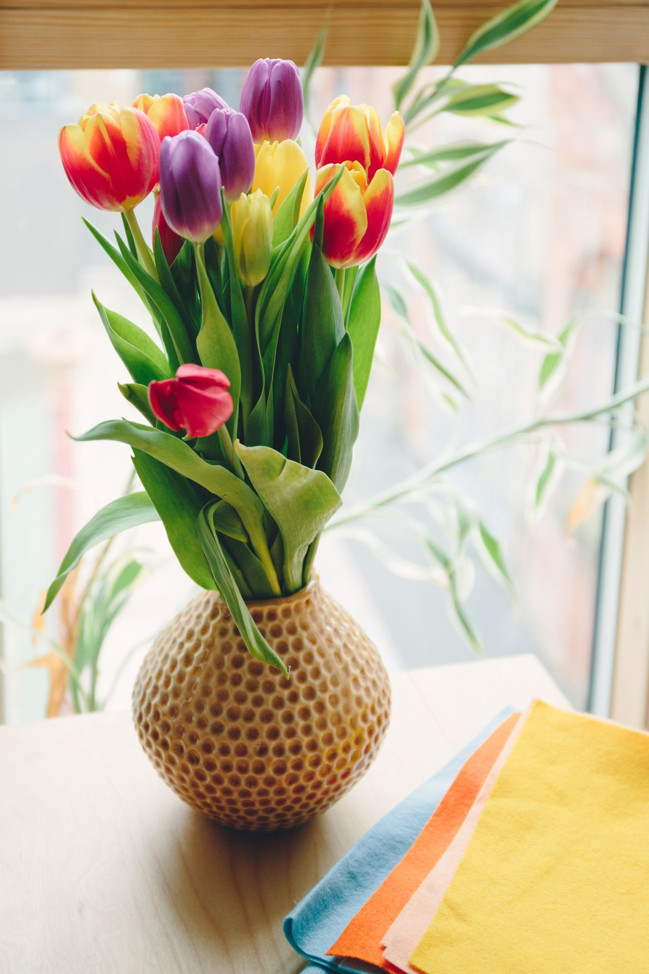 Flower Freshness Flowers Tulips Vase Tulip Petal Plant Nature No People Close-up Indoors  Home Felt Lifestyle Photography Home Decor Fragility Flower Arrangement Bouquet Spring Springtime Colourful Green