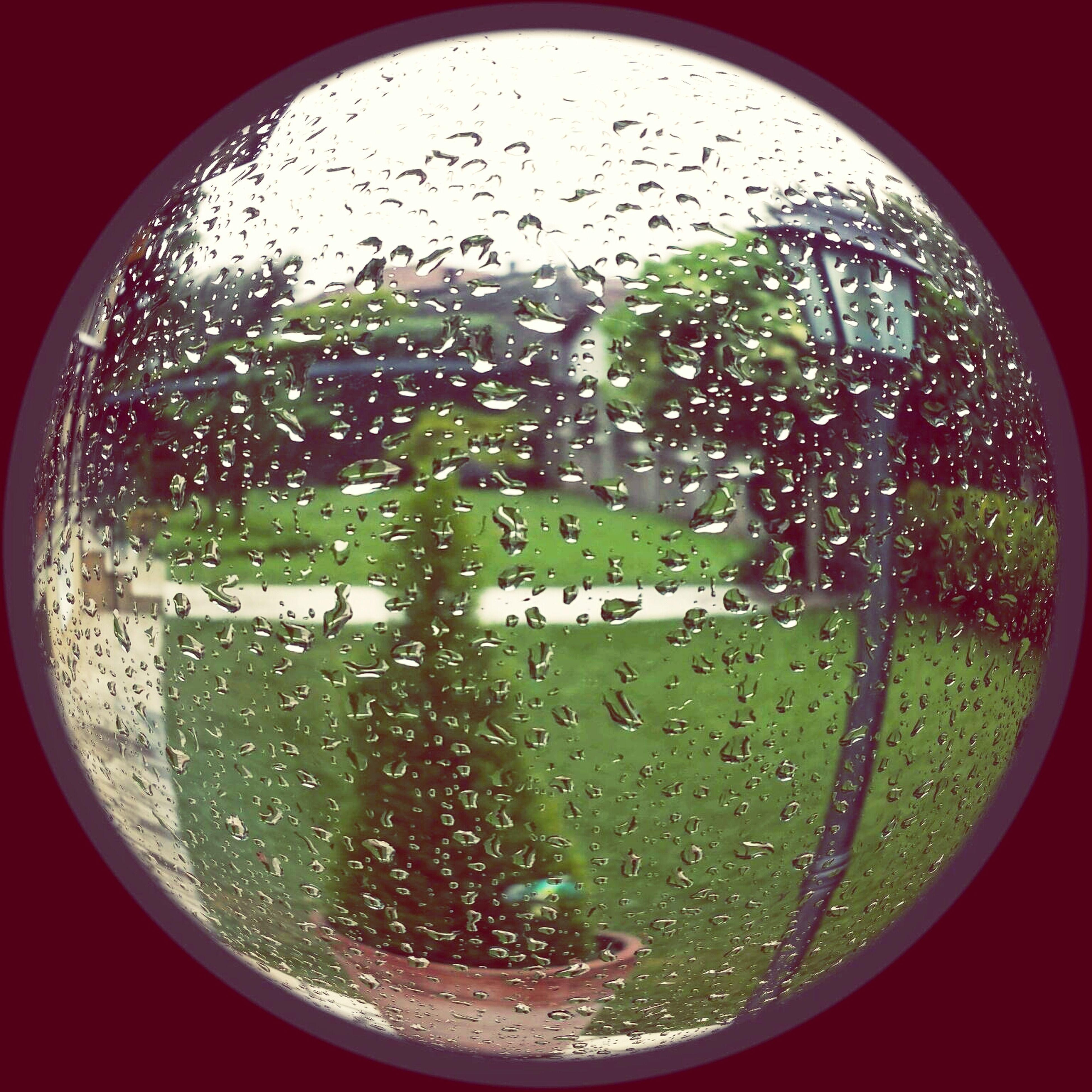 transparent, window, glass - material, drop, wet, indoors, rain, water, glass, season, raindrop, weather, car, vehicle interior, close-up, water drop, tree, droplet, looking through window, transportation