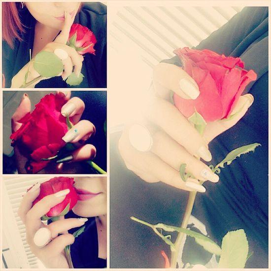 Rosé Red Manicure Nails love hands abudhabi albateen uae flowers silver nailart secret ???