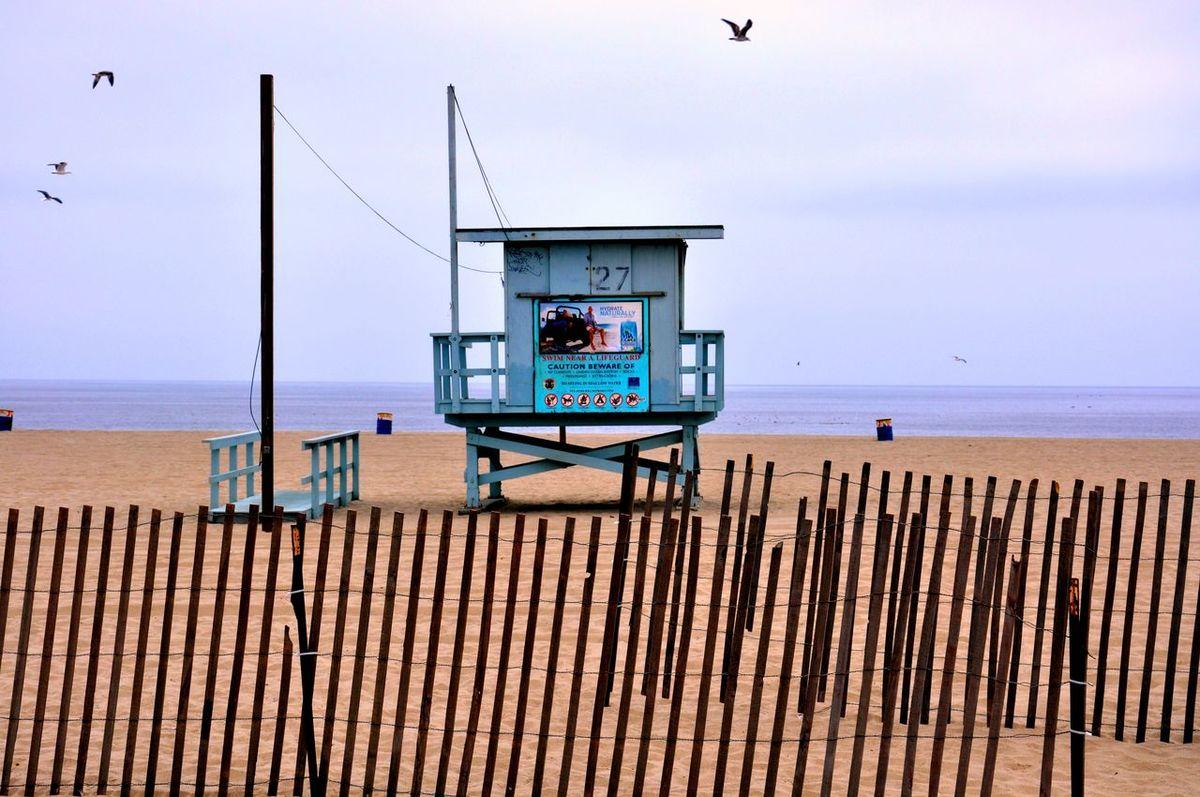 Baywatch Beach Birds Lifeguard  Lifeguard Tower Ocean Safeguard Safetyfirst Seagull Surfing
