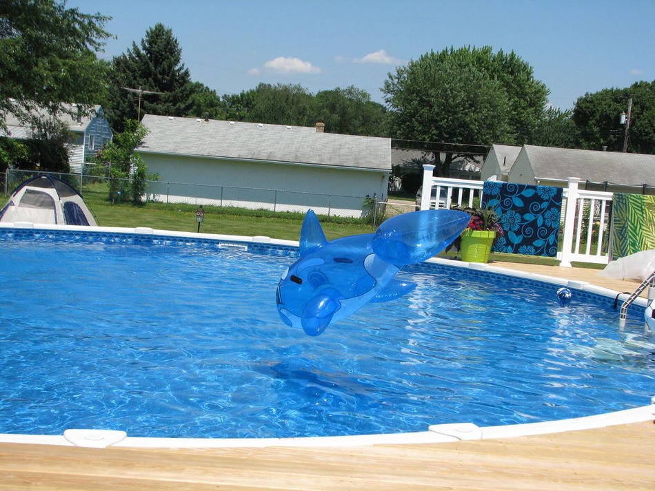 Day Inflatables Inflatables In Swimming Pool Nature Outdoors Sky Swimming Swimming Pool Tree Water