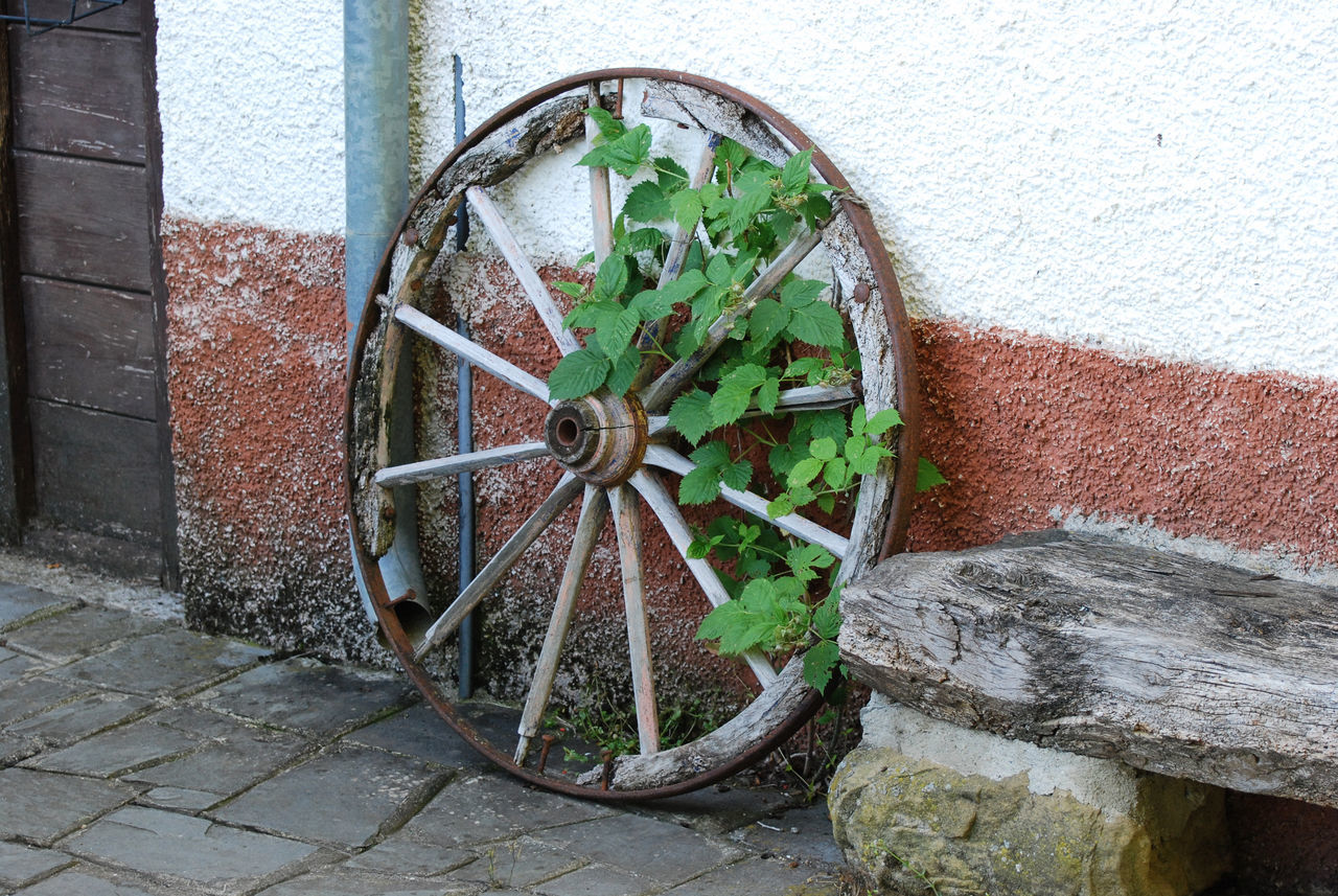 Wheel with some leaves - Paradiso dei Gatti farmhouse in Borgo Val di Taro, Parma, Italy. Agritourism Agriturism Borgo Val Di Taro Built Structure Day Emilia Romagna Farm Italia Italy Leaves Old Outdoors Paradiso Dei Gatti Parma Rural Rural Scene Tradition Wagon  Wall - Building Feature Wheel