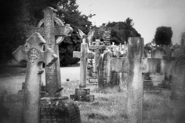 Noir Et Blanc Photography Bw_collection Eye4photography  Blancoynegro Graveyard Beauty My Unique Style Black&white Monochrome Cemetery Black & White Graveyard Blackandwhite