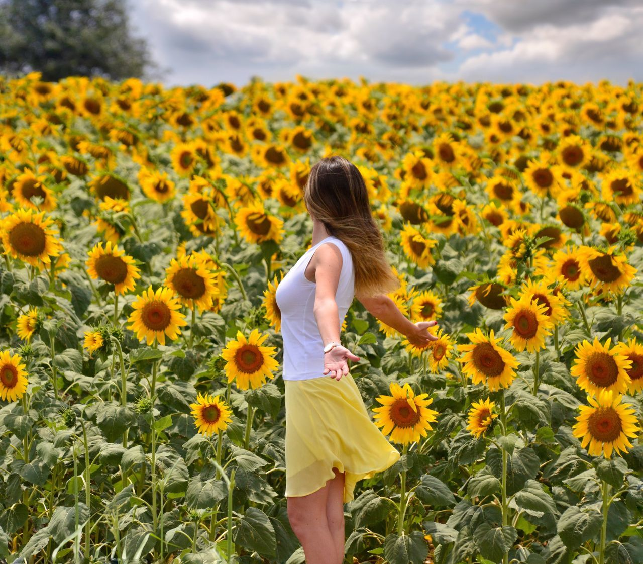 43 Golden Moments Turkey Blooming Blossom Flower Flowers Summer Views Adventure Travel Summertime Summer Self Portrait Sunflower Landscape Selfportrait Tree