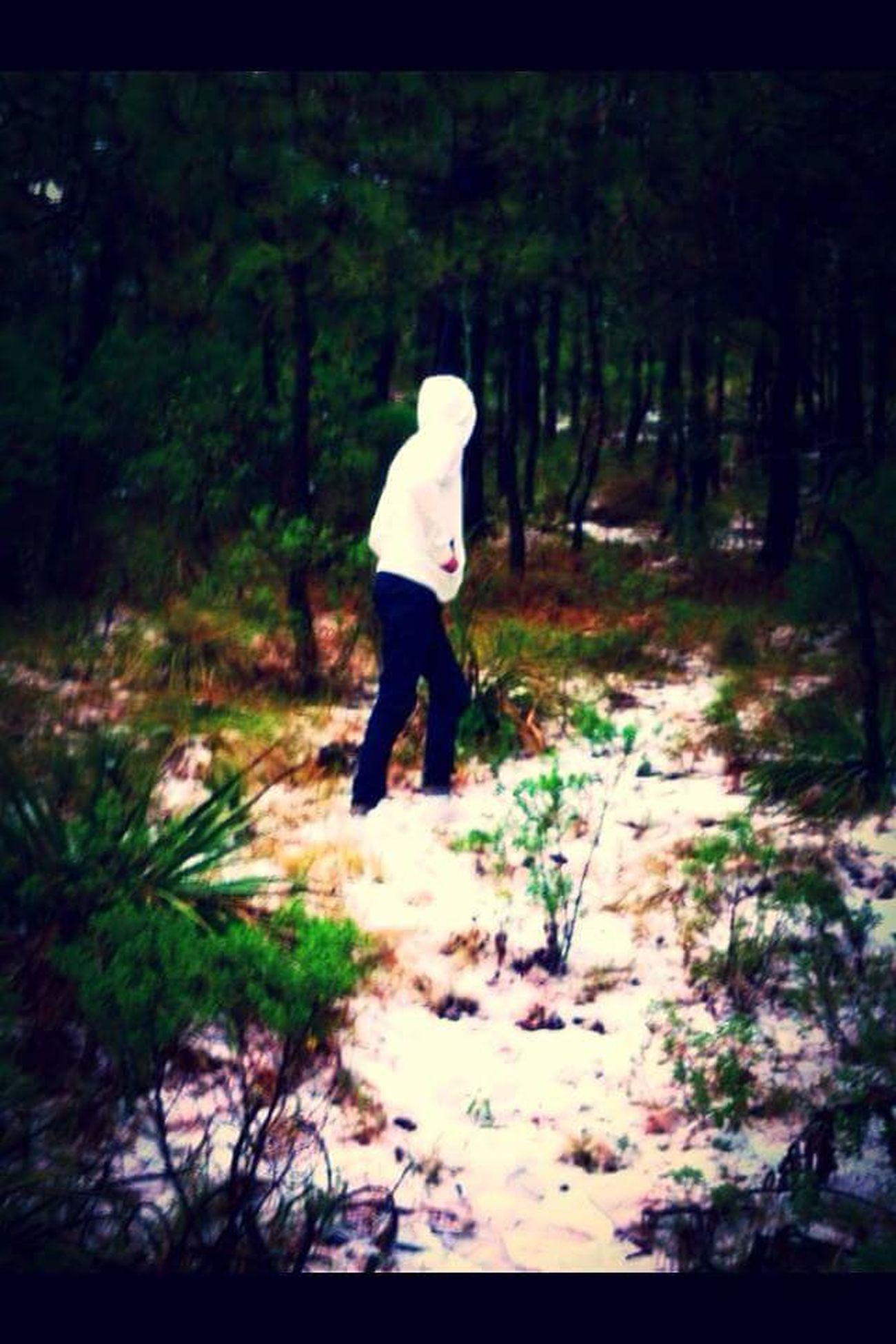 Adventure Nature Bosque Y Vida Bosque Negro Bosque Encantado Hello World Beauty In Nature Psicodelic TRYPTpic LSD Hofmann Alucination Tree Mountain Montains    Montañas❤ Lifestyles Mundo Nuevo Sexto Sentido Visionphotography