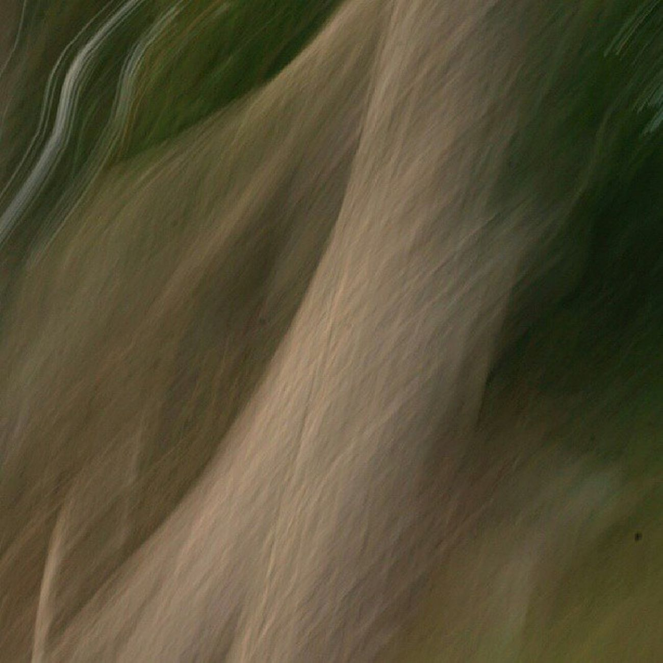 Ic_longexpo Ic_trees Igersgothenburg Igers insta_crew art_feeling fineartstorage fingerprintofgod mostdeserving