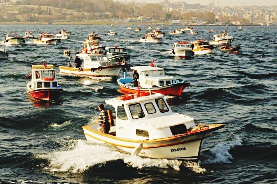 Deniz Fotografturkiye Istanbul Turkey Tarihiyarimada EyeEm Best Shotsalıkçı]:Istanbul] Fotografheryerde Turkeyphotooftheday Fotografia